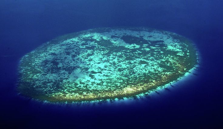 Aerial View Of Rounded Coral Reef. Maldives by Jenny Rainbow