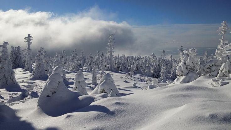 Biała zima pod Małym Śnieżnikiem. Źródło: goryiludzie.pl
