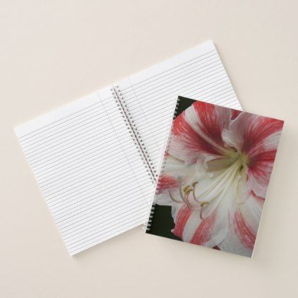 Red and White Amaryllis Floral Photo Notebook - red gifts color style cyo diy personalize unique