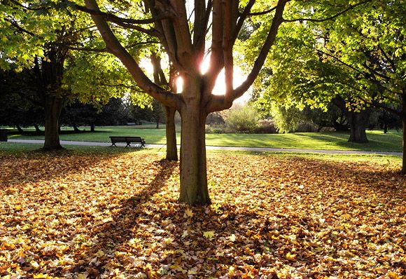 Exactly when does Autumn start in the UK?