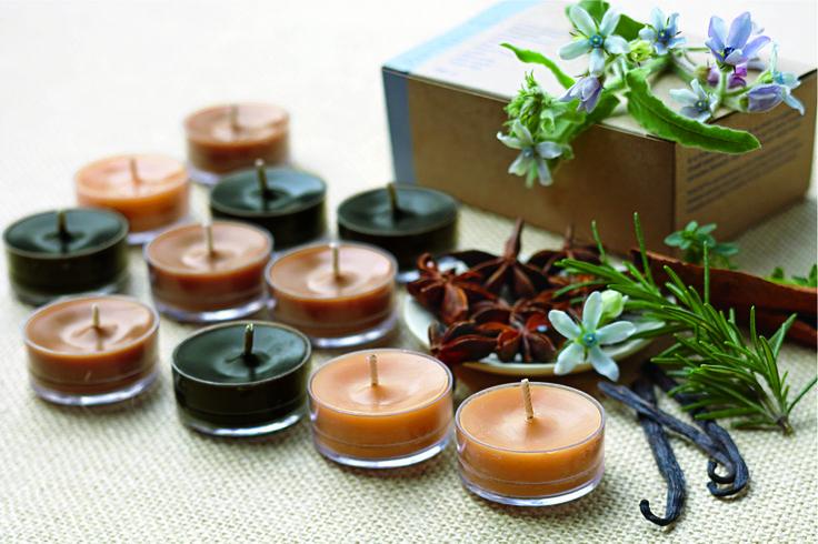 Čajové svíčky procházka lesem