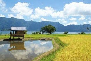 Un itinéraire authentique allant du Nord de Sumatra jusqu'à Padang. Vous découvrirez la région du lac Toba, Bukittinggi et les peuples de Sumatra.