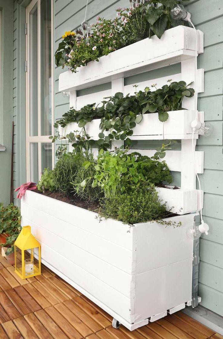 jardin vertical au balcon aménagé avec des fraisiers, des herbes aromatiques et des fleurs