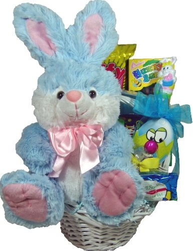 11 best easter gift baskets images on pinterest gift tags delight expressions easter bunny gift basket holiday adds negle Choice Image