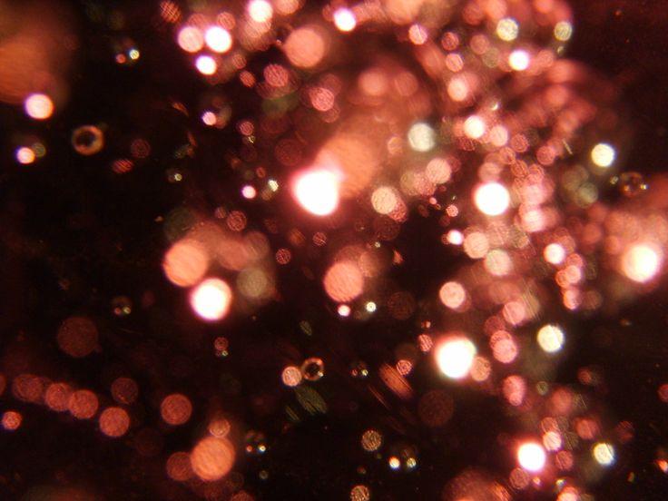 128 best twinkle lights images on Pinterest | Twinkle lights ...