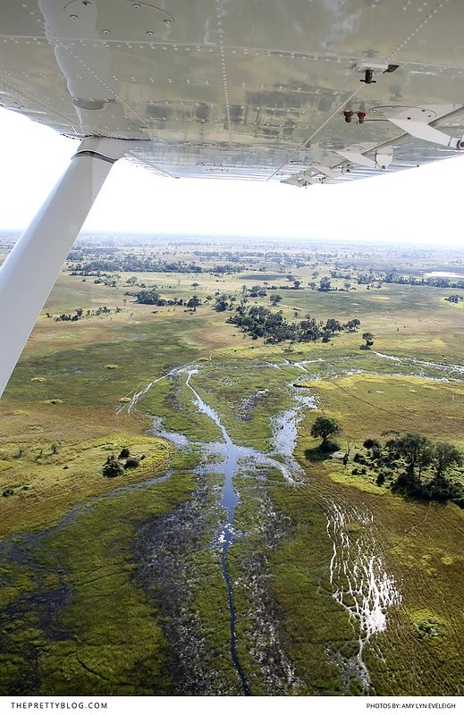 Explore the beautiful African country of Botswana!  http://tpb.staging.wpengine.com/travel/botswana-head-deep-into-the-delta/?utm_campaign=coschedule&utm_source=pinterest&utm_medium=The%20Pretty%20Blog&utm_content=Botswana%3A%20Head%20Deep%20into%20the%20Delta