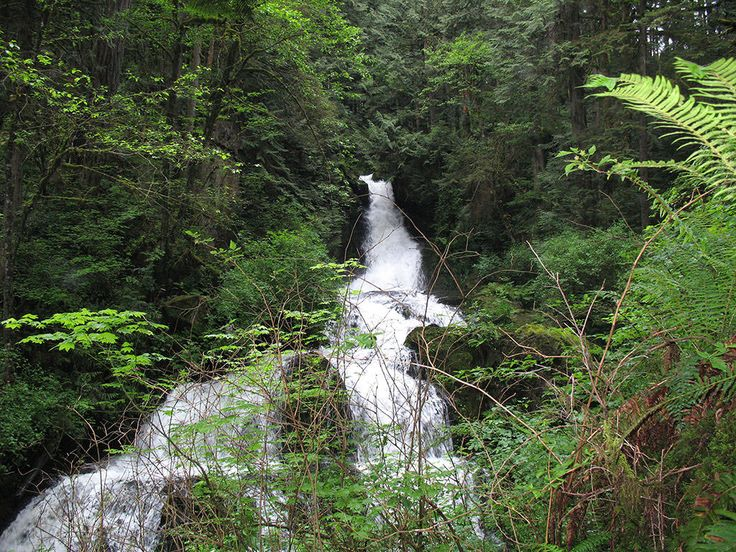 Steelhead Falls near Hayward Lake in Mission, BC