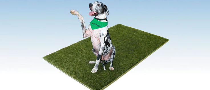 K9Grass - The only artificial grass designed specifically for dogs!