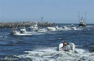 25 best images about manasquan nj my hometown on for Manasquan inlet fishing