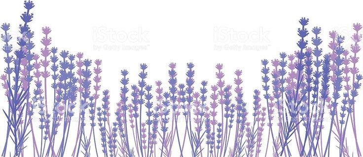 Silhouette of lavender royalty-free stock vector art