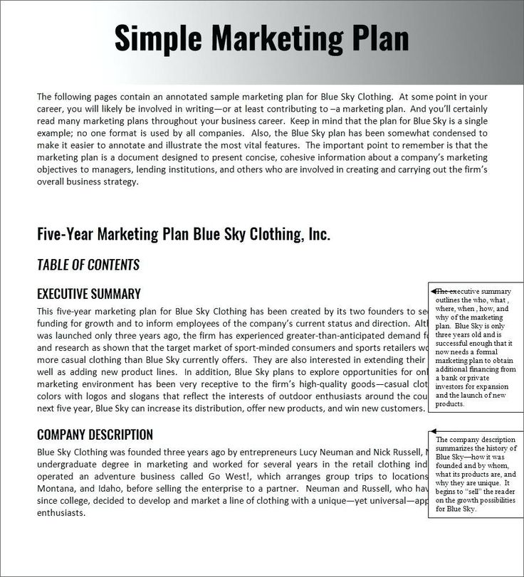 Nonprofit Business Plan Sample Pdf Non Profit Tem Condant