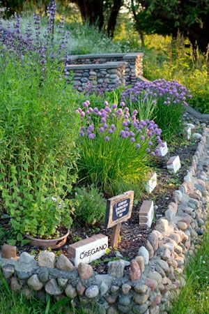 Love this little rock wall!  Need to make one around my herbs!