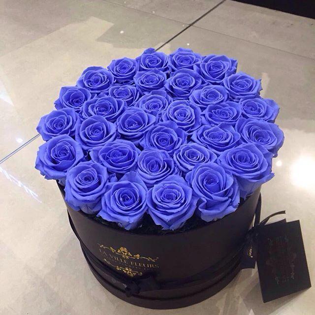 1525 besten roses magnifique bilder auf pinterest blumen. Black Bedroom Furniture Sets. Home Design Ideas