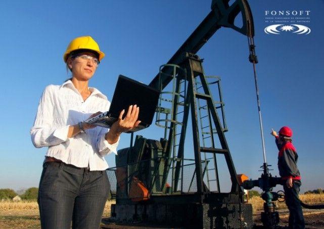 Software para detectar hidrocarburos El Fondo Fiduciario de Promoción de la Industria del Software (Fonsoft) de la Agencia Nacional de Promoción Científica y Tecnológica, otorgó un financiamiento de $403.349 a la empresa Geomap S.A. y al Laboratorio de Modelado Geológico (UBA – CONICET) para el desarrollo de Andino 3D, un software que permitirá realizar modelados tridimensionales del suelo para la exploración y explotación de hidrocarburos.