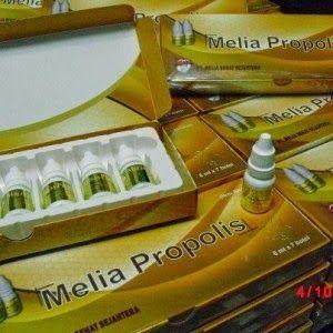 PROPOLIS MELIA NATURE - MASBI store