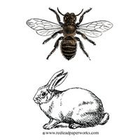 Bee Honeycomb Sketch | Rubber Stamp - Honey and Bunny