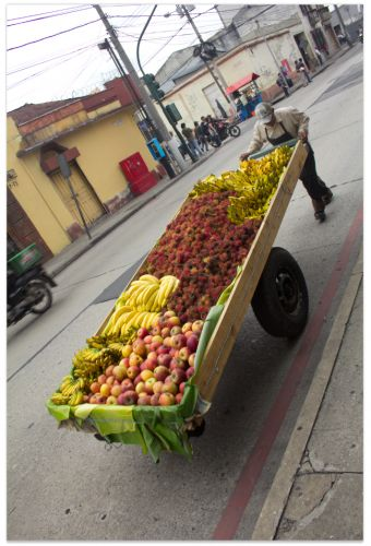 "Fruit cart in Guatemala. From ""Guatemala Daily Photo"" - a new photo every day!"