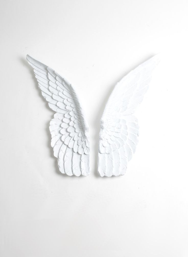 Mini Guardian Angel Set of Bird Wings in White - Angel Wings Wall Decor - Baby Nursery Wall Decor - Spiritual Wall Art - Religious Wall Art by WhiteFauxTaxidermy on Etsy https://www.etsy.com/listing/277072564/mini-guardian-angel-set-of-bird-wings-in