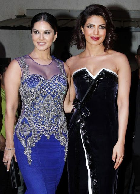 Indian Girls Villa: Celebs on red carpet at Sony Guild Awards 2015