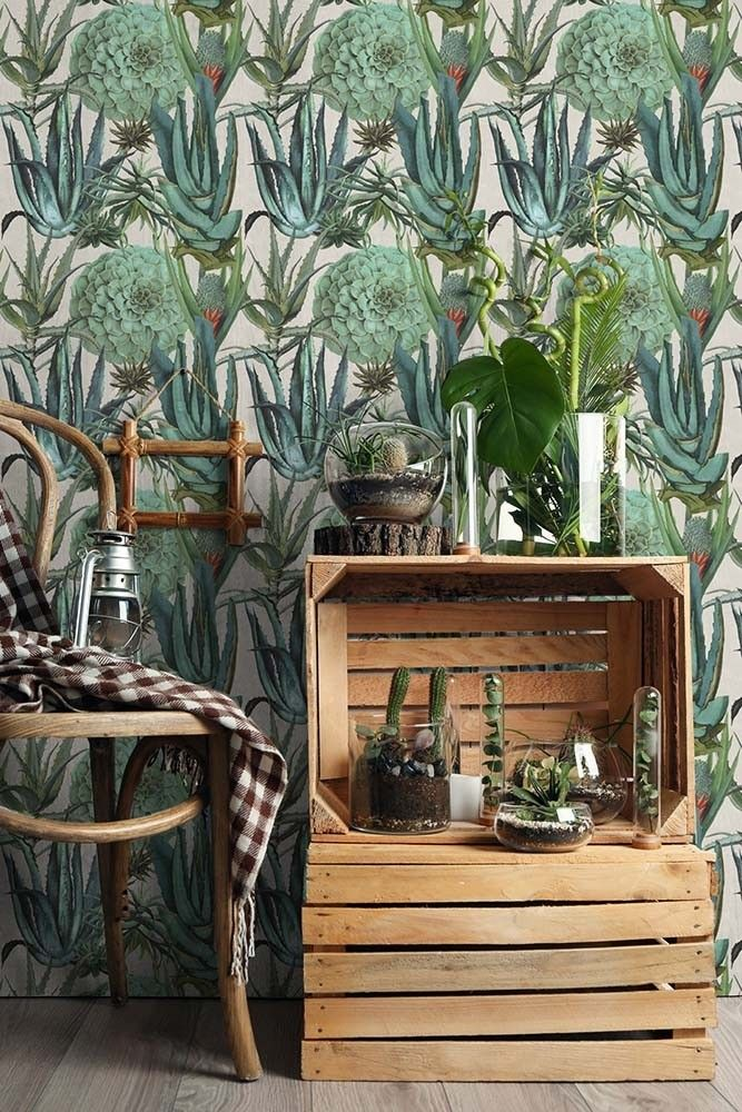 Mind The Gap Wallpaper Collection - The Rediscovered Paradise - Succulents - Roll from Rockett St George