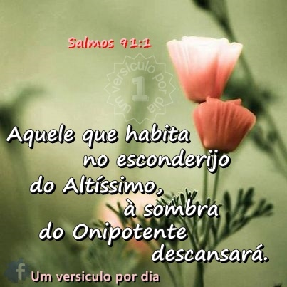 ✫Salmos 91:1✫ Aquele que habita no esconderijo do Altíssimo, à sombra do Onipotente descansará. | Whoever dwells in the shelter of the Most High will rest in the shadow of the Almighty.