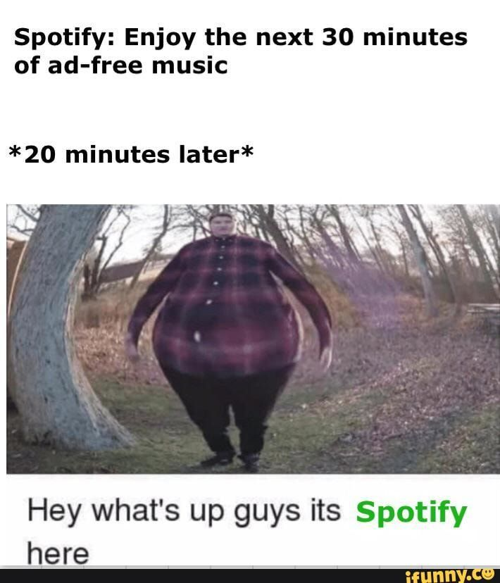 Spotify Enjoy The Next 30 Minutes Of Ad Free Music 20 Minutes Later Hey What S Up Guys Its Spotify Here Ifunny Stupid Funny Memes Funny Relatable Memes Funny Memes