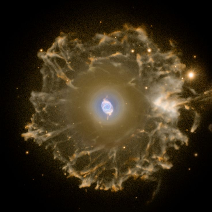 The Cat's Eye Nebula (NGC 6543) is one of the best known planetary nebulae in the sky. Its haunting symmetries are seen in the very central region of this stunning false-color picture, processed to reveal the enormous but extremely faint halo of gaseous material, over three light-years across, which surrounds the brighter, familiar planetary nebula. - Image Credit : R. Corradi (Isaac Newton Group), Nordic Optical Telescope