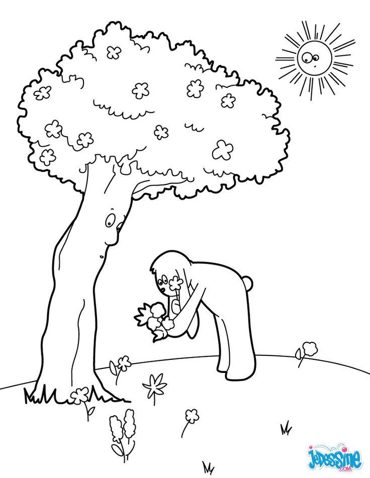 53 best coloriage images on pinterest coloring books - Dessins de fleurs de printemps ...