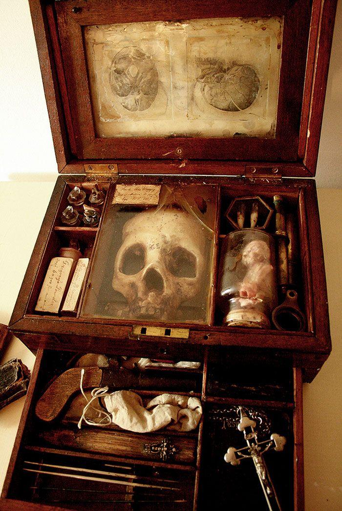 Em 2006, em Londres, quando trabalhadores demoliam uma velha casa, eles descobriram uma coisa estranha. Uma incrível coleção de esqueletos de criaturas fantásticas escondida no porão da casa em ruínas. Aparentemente intocada desde 1940, as caixas encontradas continham mais de 5000 espécimes de flora e fauna, recolhidas, dissecadas e preservadas. A coleção também tinha artefatos (...)