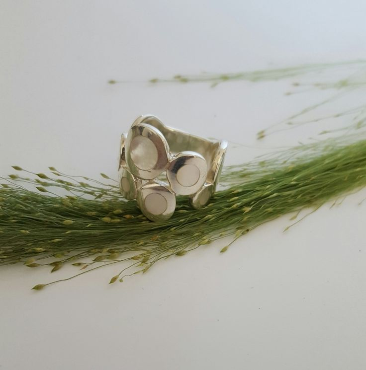 Ring Paarlemoer Circles