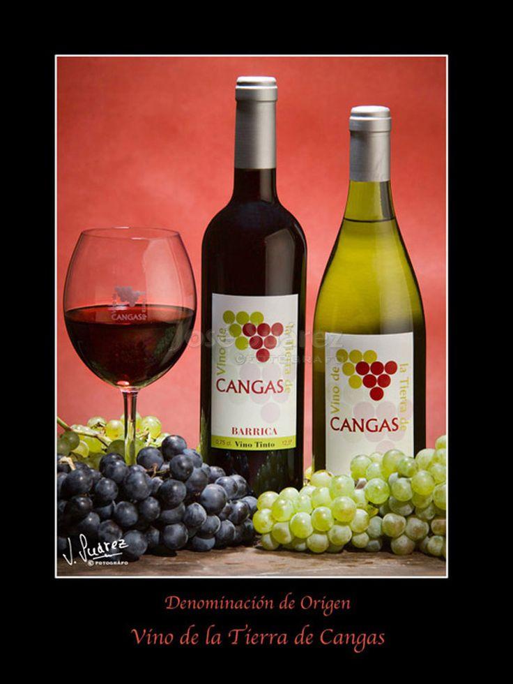 Vino de Cangas. Asturias,gastronomia,bodegón,vino de Cangas,denominación de origen.