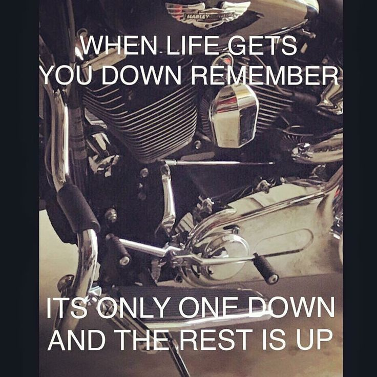 Harley Davidson Quotes 41 Best Motorcycles Images On Pinterest  Biker Chick Girls On
