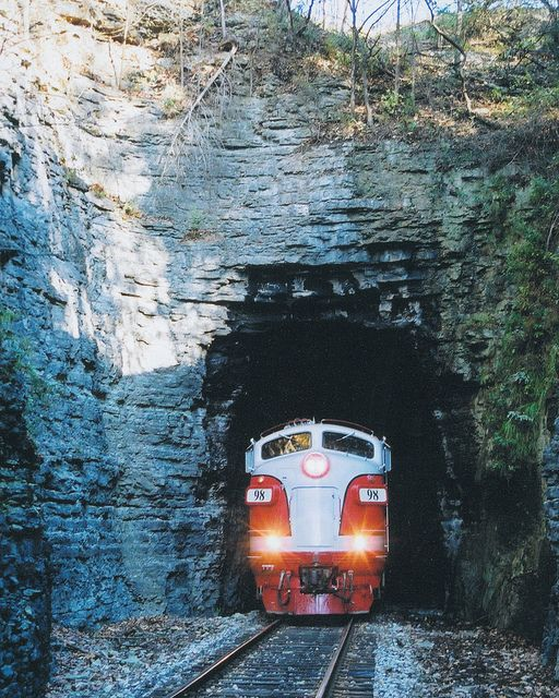 Branson Scenic Railway: 40-mile excursion through the Ozark foothills. Seats are not assigned, so you are free to roam the train, checking out the dome and coach cars, most dating from the 1940s and '50s. A running narration details the history of the area. For a memorable dining experience, book a dinner excursion on Saturday nights.
