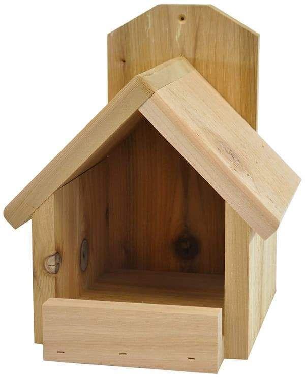 Backyard Boys Robin Cardinal Nest Box Bird House Plans Free Cardinal Bird House Bird House