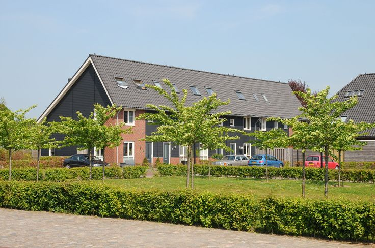 Woonwijk de Woerden in Herveld, inrichting openbare ruimte en beplanting kersenboomgaard