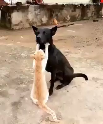 Let Me Give You Nice Massage