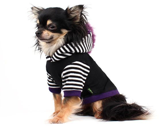 Dog clothes for adorable pets! Fun dog hoodie created from a quality black stretch knit with black and white striped sleeves and hood. The hood