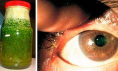Esta planta te mejora la visión aunque tengas 70 años