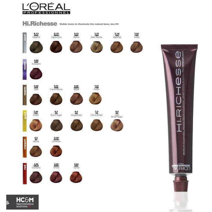 Loral Professionnel Hiesse Color Chart Dark Skin Mac