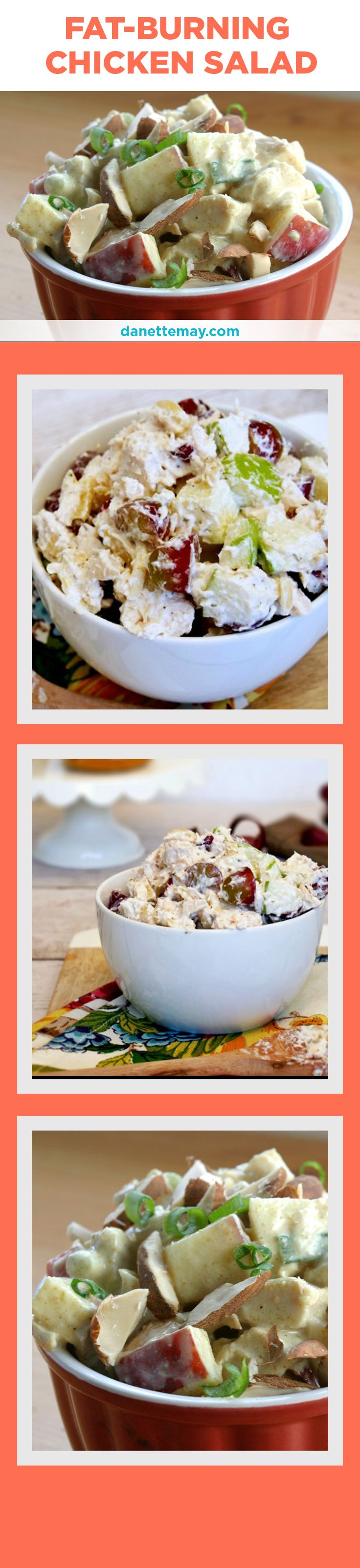 This clean and healthy Chicken Salad recipe is one of my most popular recipes and one bite will tell you why. It's easy to make and a super healthy recipe for lunch! See the full recipe here: http://danettemay.com/fat-burning-chicken-salad/