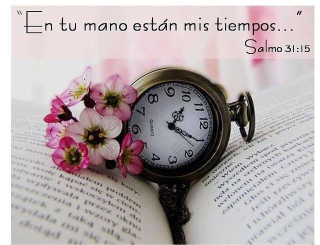 """In your hand are my times"" Salmo 31:15 #time #bible #god #faith #praying #goodvibes #toremember #positivethinking #believe"