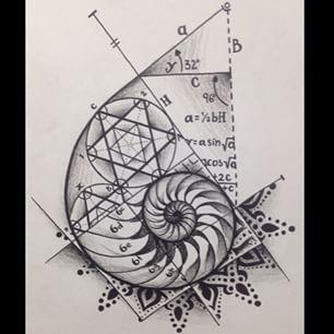 fibonacci                                                                                                                                                                                 More