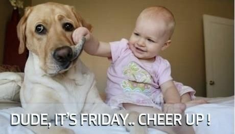 funny thank god it's friday pictures | Friday Funny! ;-) Cheer Up! | iLife Journey