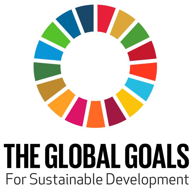 The Division for Sustainable Development (DSD) seeks to provide leadership and catalyse action in promoting and coordinating implementation of internationally agreed development goals, including the seventeen Sustainable Development Goals (SDGs).