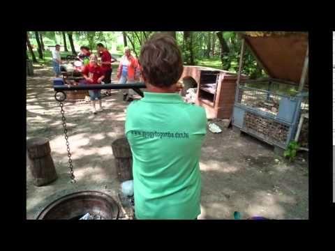 Családi nap-Családi pólókollekció- ganoderma