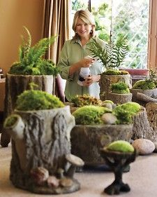 cut logs, drill out with a hole saw, plant mosses and ferns, and place in a shady garden nook for an instant old-world charm. YES!