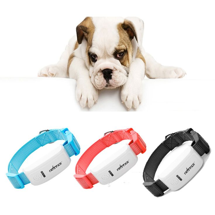 Mini Pet GPS Tracker Long Standby Time Dog Cat personal Pet Collar gps tracker /IOS /Andriod App free website service