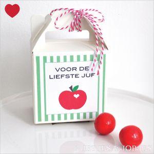 Juf & Meester bedankje gable box + gratis printable