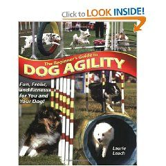 Beginners Guide to Dog Agility, training ideas for starting your dog or beagle on agility competitions and trials