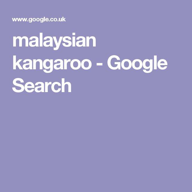 malaysian kangaroo - Google Search